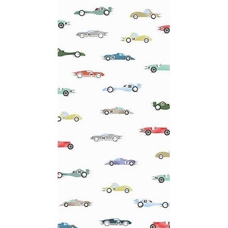 Гоночные машины (4654)
